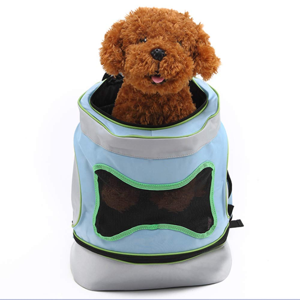 bluee Large bluee Large Soft-Sided Pet Carrier Backpack for Small Dogs and Cats Airline-Approved, Designed for Travel, Hiking, Walking & Outdoor Use