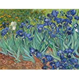 Canvas Prints Of Oil Painting ' Irises, 1889 By Vincent Van Gogh ' , 30 x 39 inch / 76 x 99 cm , High Quality Polyster Canvas Is For Gifts And Foyer, Home Theater And Kitchen Decoration, my
