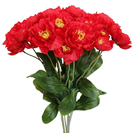 Amazon htmeing 10pcs 2 heads artificial poppy flowers silk htmeing 10pcs 2 heads artificial poppy flowers silk coquelicot rosemary flowers wedding home decoration red mightylinksfo