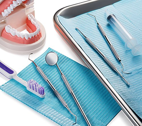 Price comparison product image Dental Kit Mirror Hygiene Kit Toothpick Tartar Scraper Tools Plaque Remover, Professional Surgical Grade elco stainless steel cleaner, Braces Dog Orthodontic oral hygiene 4 Tool Kit by Diamond Driven