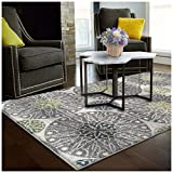 Superior Rosette Collection, 6mm Pile Height with Jute Backing, Quality and Affordable Area Rugs, 4′ x 6′ Grey Review