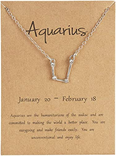 Astrology Horoscope Jewelry Constellation 18 Chain December January Birthday Gift CAPRICORN Zodiac Necklace with Cubic Zirconia Crystals
