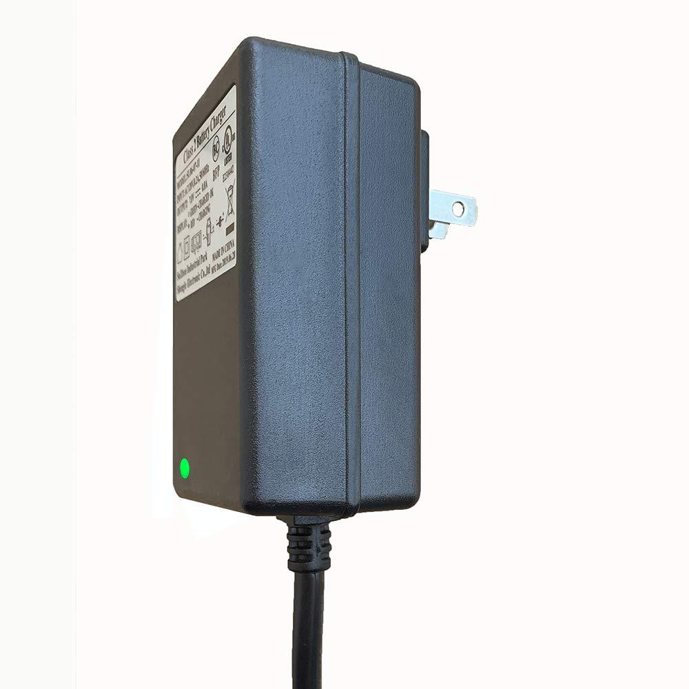 Amazon.com: Weelye Cargador de batería de coche eléctrico ...