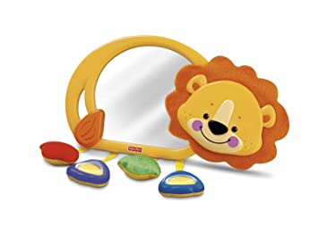 Amazon.com : Fisher-Price Precious Planet Crib-to-Floor Mirror ...