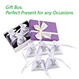 MISSYOUNG 8-Pack 100% Natural Lavender Scented