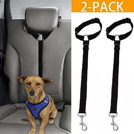 DGSD 2 Correas de Seguridad para cinturón de Seguridad para Perro ...