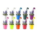 10x Simpa® Bright Colourful metal balcone pianta vaso di fiori appeso vaso set di 10colori brillanti spessore extra resistente in acciaio design Home Garden Décor