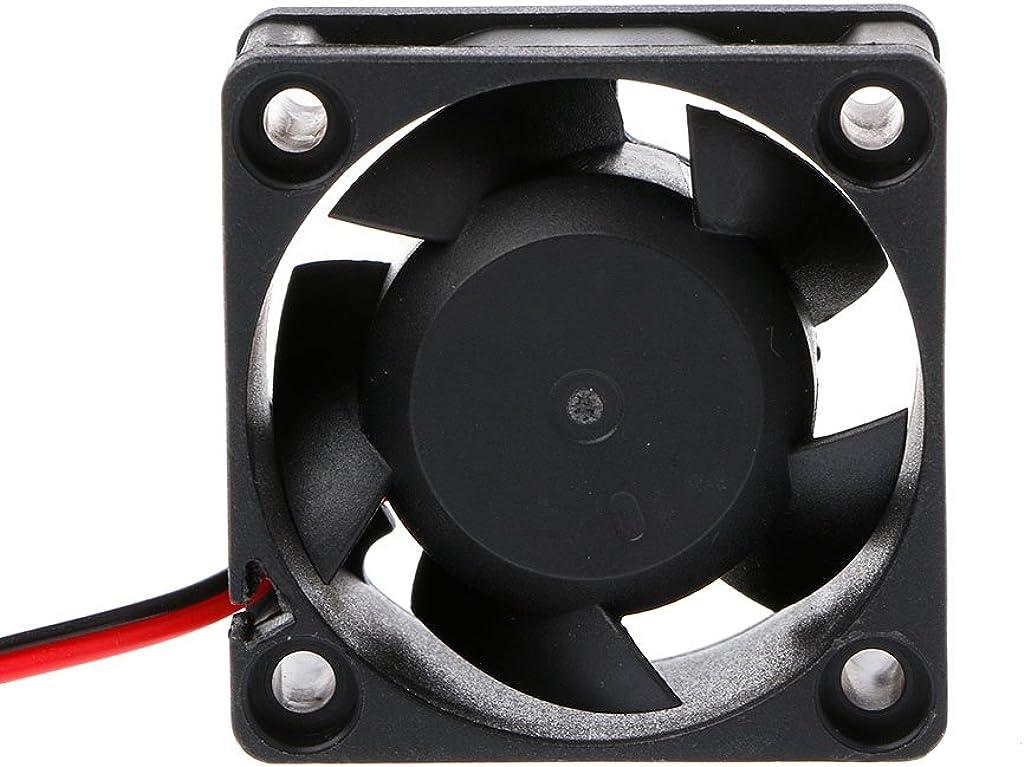 DC 12V 2-Pin 5 Blade Cooler Brushless Mini Cooling Fan 4020 40/×40/×20mm