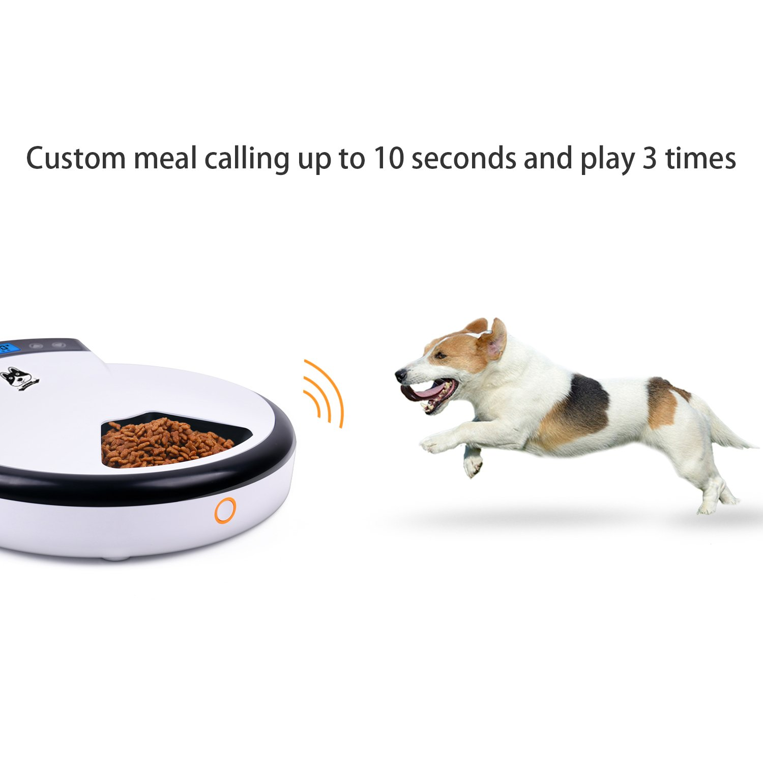 TDYNASTY DESIGN Automatic Pet Feeder for Dogs & Cats | Dry & Wet Food - 5 Meals, 5 x 240ml by TDYNASTY DESIGN (Image #4)