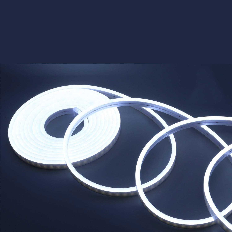 12 V 5 M Neon Bande DEL flex Tube Lumineux Flexible Outdoor À faire soi-même éclairage IP65 set
