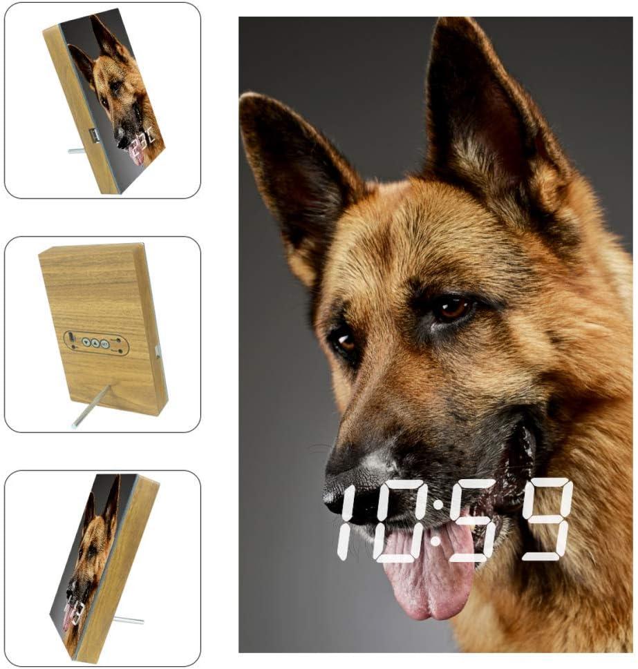 Inhomer an Adorable German Shepherd Bedrooms Alarm Clock Bedside Digital Alarm Clock LED Alarm Clocks with USB Port for Charging,Office & Home Decoration Clock