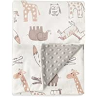 Boritar Baby Blanket Soft Minky with Double Layer Dotted Backing, Lovely Animals Printed 30 x 40 Inch