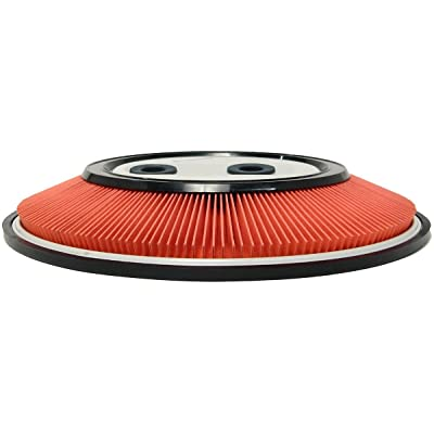 Luber-finer AF289 Heavy Duty Air Filter: Automotive