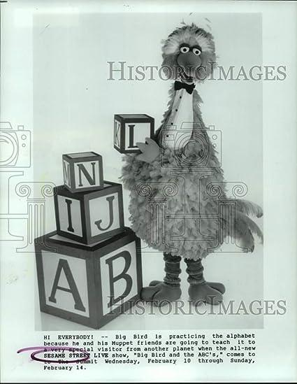 Amazon Com Vintage Photos 1988 Press Photo Big Bird