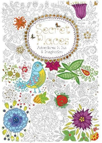 Secret Places: Adventures in Ink and Imagination (Colouring Books)