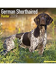 German Shorthaired Pointer Calendar 2019