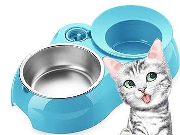 Loonju Dispensador de Agua para Mascotas, Gatos y Perros, de Alimentación, automático, antihormigas, Doble Juego de plástico, Azul: Amazon.es: Deportes y ...
