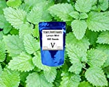Virgin Seed Supply™ Lemon Mint 300 Count Herb Seed Pack Organic Non-GMO Heirloom Variety