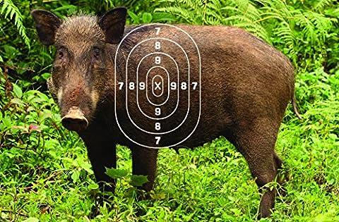 Shooting Targets 12