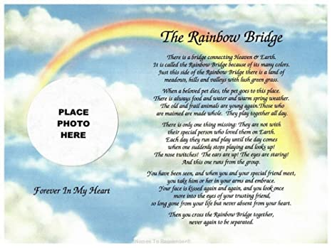 photo regarding Rainbow Bridge Poem for Dogs Printable referred to as Cazual Creations inside of Memory of Doggy Rainbow Bridge Memorial Poem Sentimental Reward for Reduction of Pet Cat