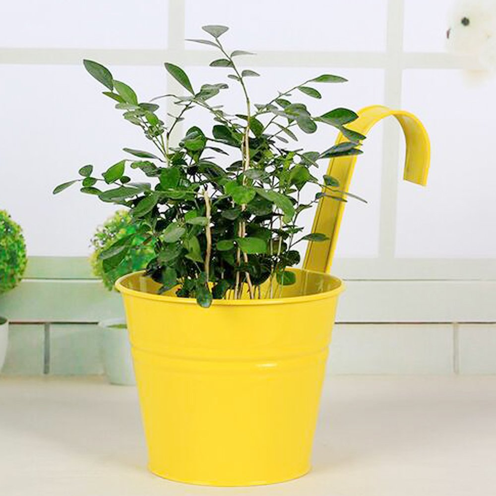 Amazon Garden Flower Potshanging Flowerpotsbalcony Planters