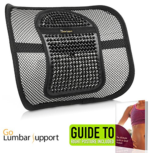 Arch Back Chair - Go Lumbar Support Mesh Back Cushion for Car Seat Desk Office Chair [UPGRADE VERSION WITH STRAP], Recommended by Chiropractor Dr. Jose Guevara for Orthopedic Driving Comfort and Posture Support, Black