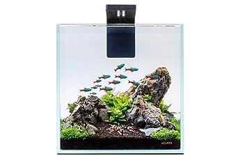Nicepets ® - Kit de Acuario de Cristal pequeño Completo con ...