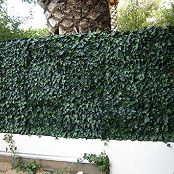 Haie de lierre PVC - 1 m2 vert 33 m2: Amazon.fr: Jardin