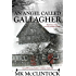 An Angel Called Gallagher (Montana Gallaghers Book 4)