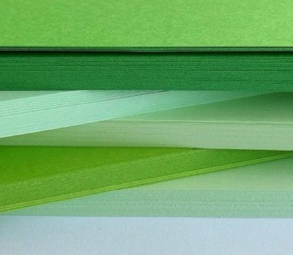 Dalton Manor cartoncini A4/80/GM 500/fogli assortiti colore//tinta di alta qualit/à tinta blu