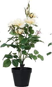 نبات زينة اصطناعي أواني, زهور متجانسة