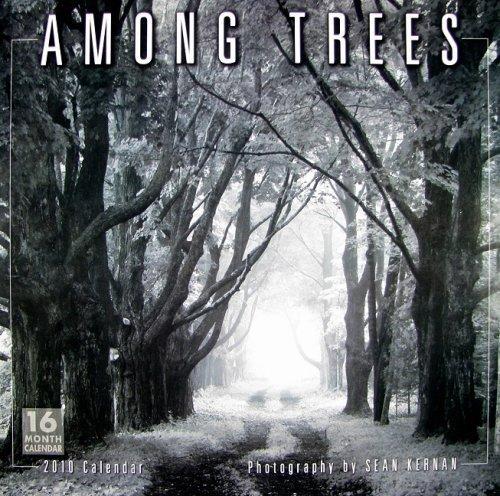 Among Trees 2010 Wall Calendar (Calendar) by Sean Kernan (2009-07-25)
