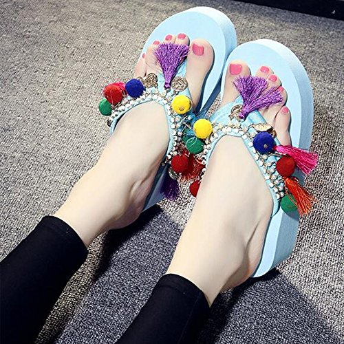 Slippers HAIZHEN Women shoes 5.5cm Female Summer Fashion Handmade National Wind Thick Bottom High Sandals (Black/Beige/Blue/Pink/White) for Women (Color : Black, Size : EU38/UK5.5/CN38) Blue