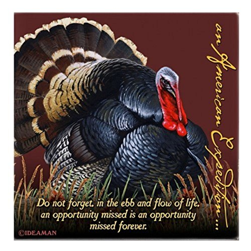(Wild Turkey Square Absorbent Stone Coasters)