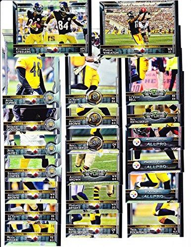 Pittsburgh Steelers Brown Football Case - 5