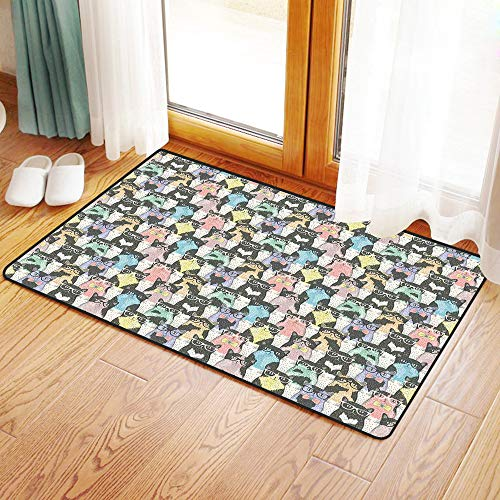 Non-Slip Mat Microfiber Bathroom Rug Shower Mat, Cat,Pattern with Hipster Playful Feline Characters with Glasse, Ultra Soft and Water Absorbent Bath Rug,Machine Wash/Dry 24x 39 inches (Hipster-glasse)
