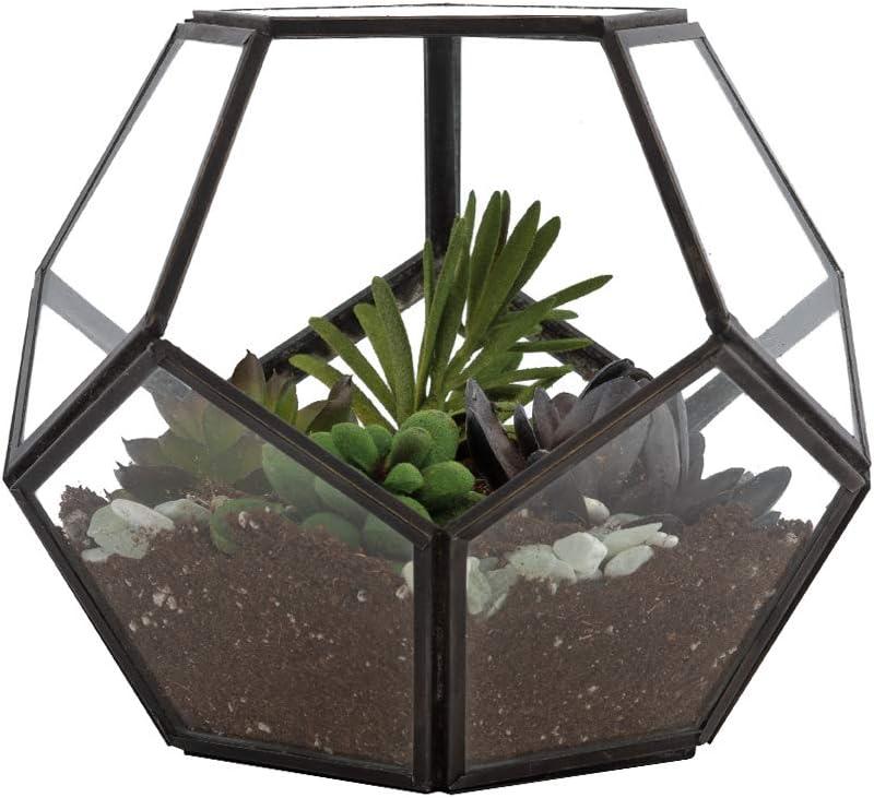 Urban Born – Pentagon Dodecahedral Tabeltop Succulent Terrarium- 6 x6 x6 Black Steel