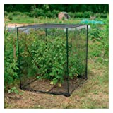 Fruit Cage Small
