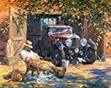 WOWDECOR Paint by Numbers Kits for Adults Kids, Number Painting - Yard Car Old Men & Dog 16x20 inch (Frameless)