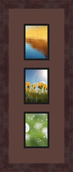 Art to Frames Double-Multimat-879-736//89-FRBW26061 Collage Frame Photo Mat Double Mat with 3-3.5x5 Openings and Espresso Frame