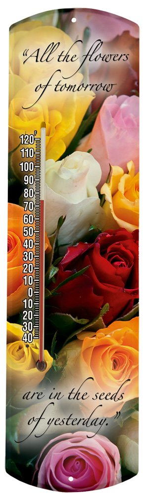 Heritage America by MORCO 375AF All The Flowers Outdoor or Indoor Thermometer, 20-Inch
