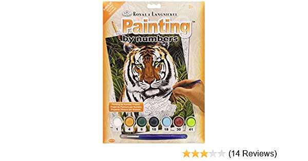 Amazon.com: ROYAL BRUSH Junior Small Paint By Number Kit 8-3/4