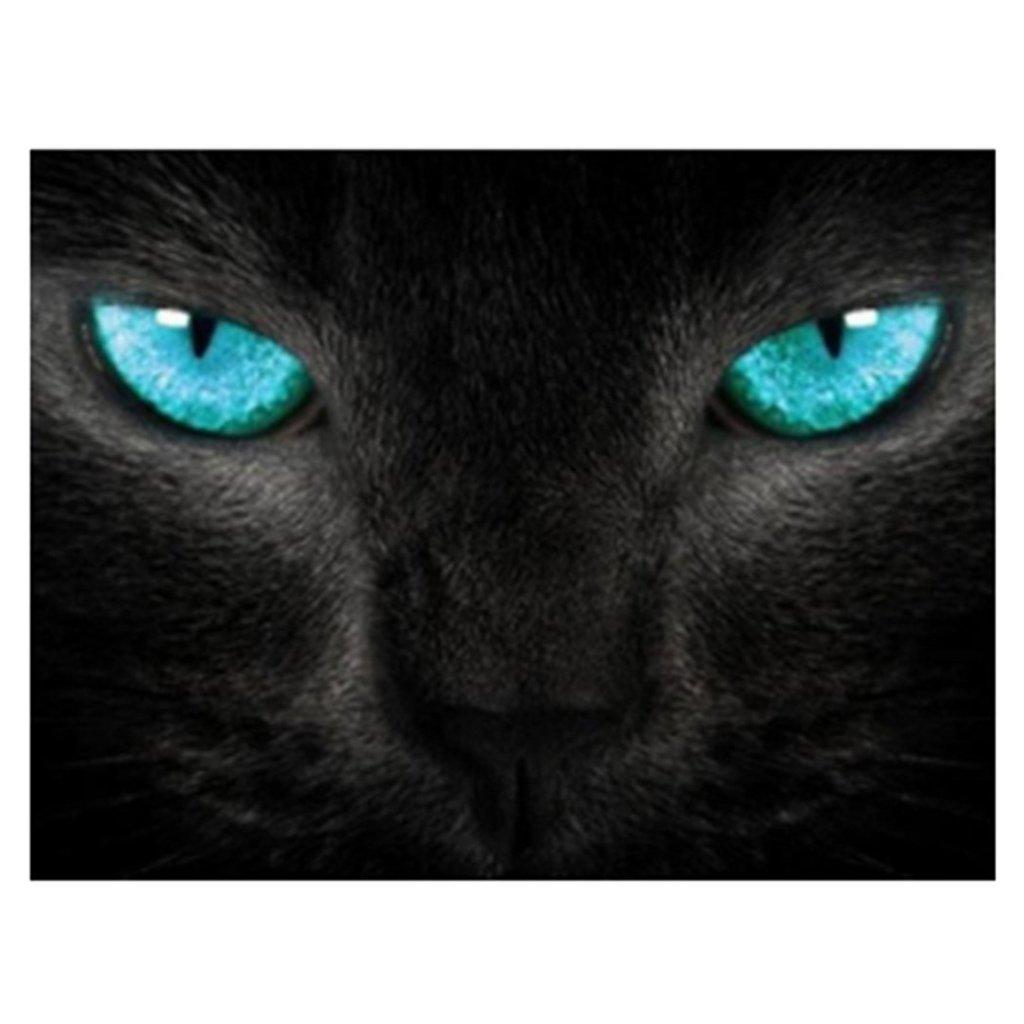 Sharplace Set de Pintura Gato Negro Estilo Impresado Cuadro Decoración Hogar Casera Bordado Arte Hermoso: Amazon.es: Hogar