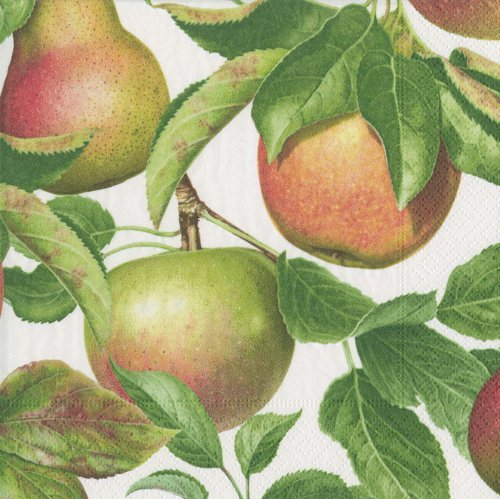 Paper Napkins Farmhouse Christmas Decor Country Decorations Fall Decor Dessert Napkin Apple Pk 40 by Caspari