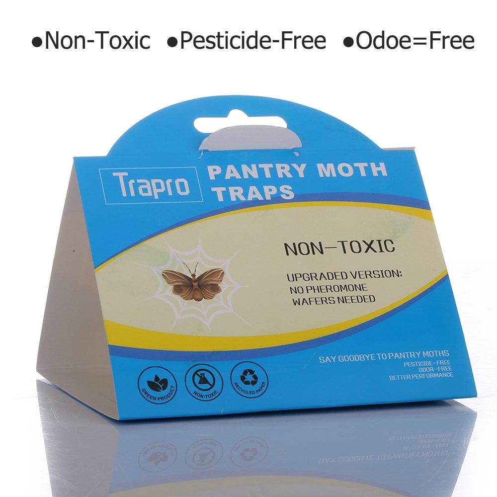 Trampas para polillas, con cebo de feromonas, inodoras, sin insecticida, inocuas: Amazon.es: Jardín