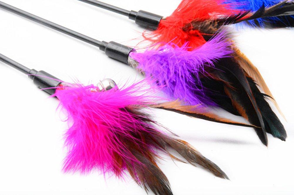 drawihi Lot de 3bâtons de chat Taquine cloches avec plumes et ANIMAL Jouet pour chat Flexible en plastique Turquie Ressort 63cm Pole