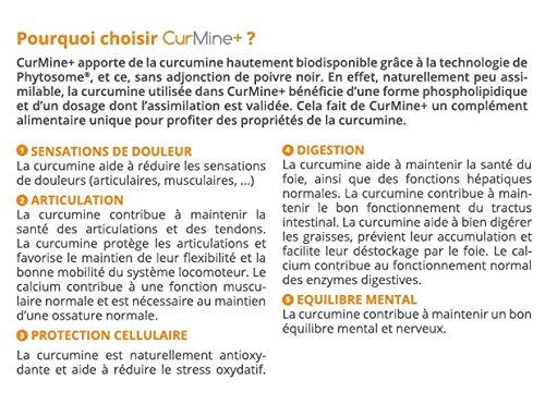 curmine + 30 Cápsulas - Ebo Francia - Curcumina phytosomale phospholipidique hautement assimilable - Dolores, Articulación, Digestión, hígado, intestino, ...