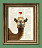 CAMEL in LOVE beautifully upcycled vintage dictionary page book art print