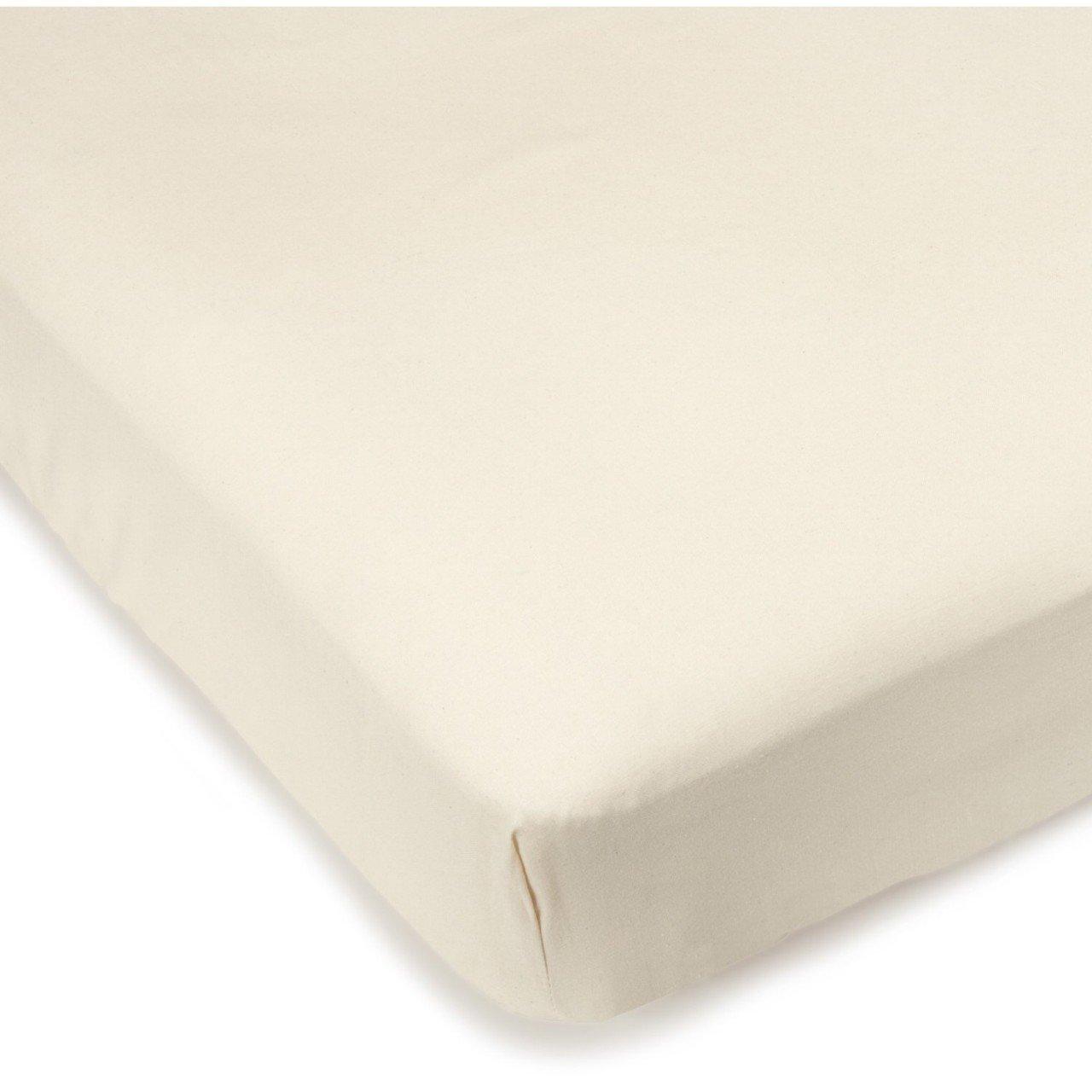 Sleeper Sofa Mattress Encasement Size: Sofa Sleeper Full