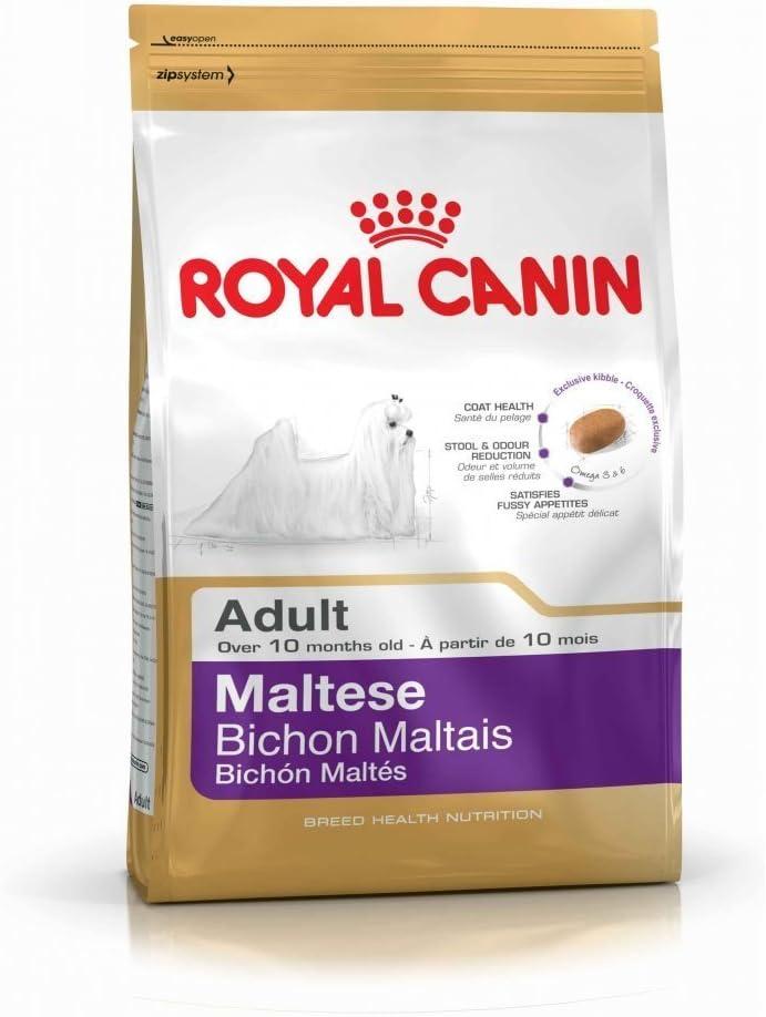 Royal Canin Comidas para Perros Maltese 24 Adultos
